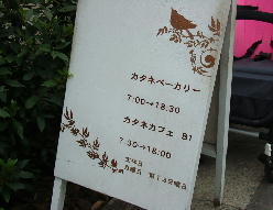 0426カタネ.jpg