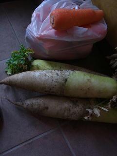 130310野菜.jpg