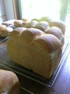 130518フランス食パン.jpg