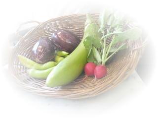 150919葉山野菜.jpg
