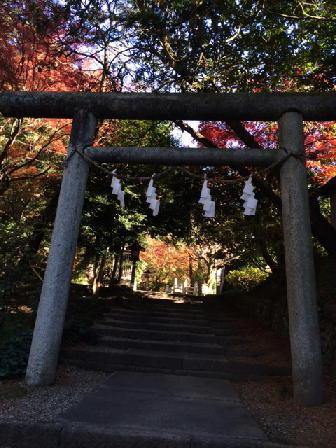 151201神社2.JPG
