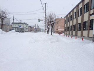160101雪1.JPG