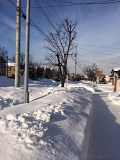 160101雪2.JPG