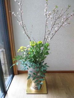 160220迎花.jpg