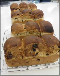 160514土曜レーズン食パン.jpg